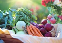 Vegetables 2485055 1280 218x150