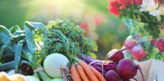 Vegetables 2485055 1280 324x160