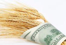 Wheat And Dollars Bigstockphoto 900x600 218x150