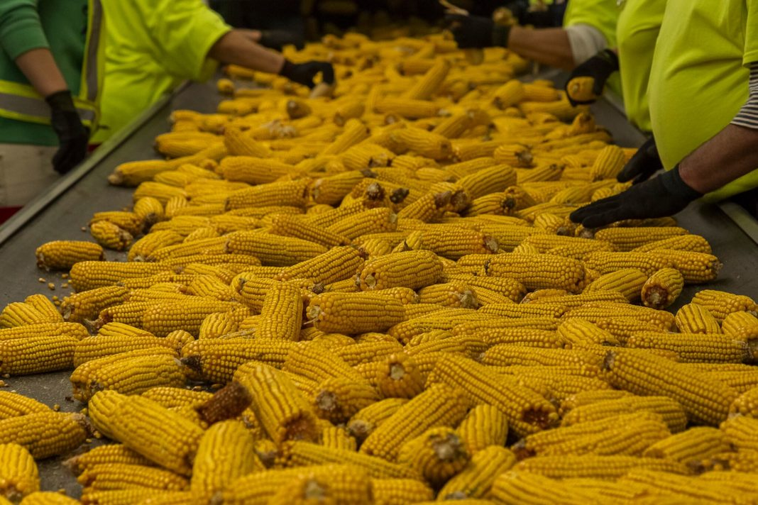 Brazilian Cruiser Martial Law And Brazil Affect Corn Export