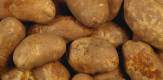 Vyrawivanie Kartofelja 324x160