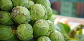 Brussels Sprouts 318200 1280 324x160