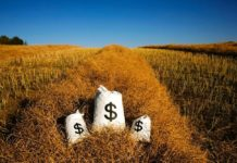 Money Canolaswath 108751255 Thinkstock 218x150