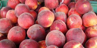 Peaches 101345 1280 324x160