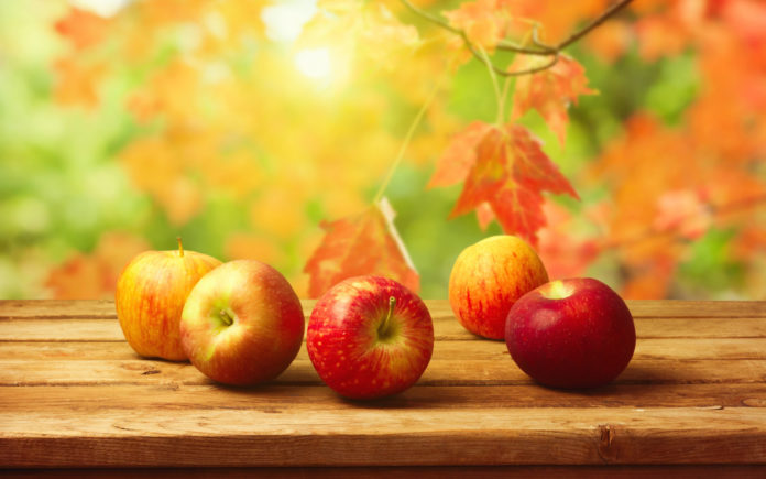 Apples To Poland Exports Of The Ukrainian Apples Will Continue To Grow If They Are Higher Quality Than The Polish Ones