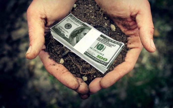 All In Bank Banks Lend Up To 70 Of The Cost Of Agricultural Production