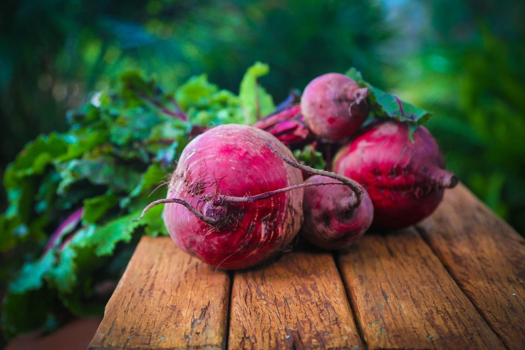 The Root Of All Evil Ukraine Is Waiting For A Massive Import Of Red Beet The Price Of Ukrainian One Has Doubled