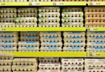 Egg 1316407 960 720 218x150