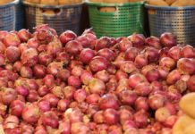 Onions 218x150