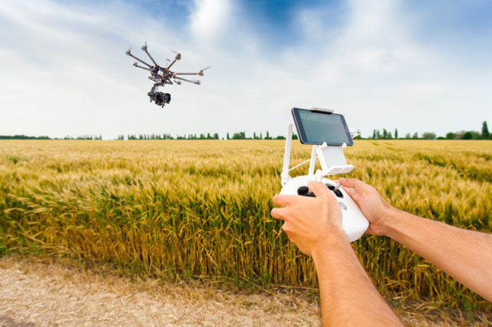 Drone On Plant 696x463