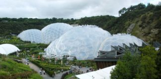 The Largest Greenhouse 4 324x160
