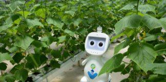 Robot 1 1024x683 324x160