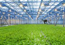 1528797170 Tu Delft Pilotproject Pats Indoor Drone Solutions Insecten Aanpakken In Kassen Met Drones 2018 218x150