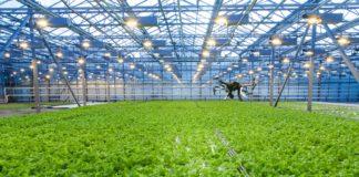 1528797170 Tu Delft Pilotproject Pats Indoor Drone Solutions Insecten Aanpakken In Kassen Met Drones 2018 324x160