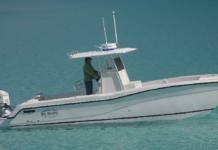 Hydrocat 001 218x150