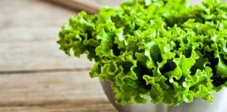 Fresh Green Lettuce 2880x1800 E1570263616926 324x160