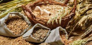 Agroschema Cereals 324x160