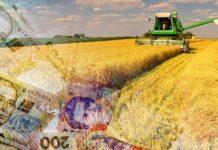 Agrariyi Apk Groshi Silskospodarski 218x150