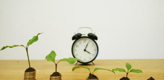 Minekonomiky Rozglyadaye Novi Napryamky Ta Programy Derzhpidtrymky Agrosektoru