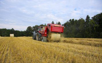 Ukrayinski Agrariyi Vzhe Zibraly 80 Zerna