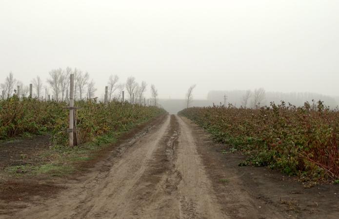 V Ukrayini 16 Oblastej Efektyvno Vykorystovuyut Vlasnyj Kapital