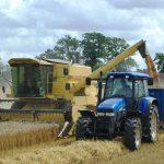 Obsyagy Vyrobnytstva Agroproduktsiyi V Ukrayini Skorotylysya Na 142