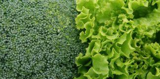 Seven Fildz Farm Perehodyt Na Vlasne Vyroshhuvannya Rozsady Salativ I Brokoli