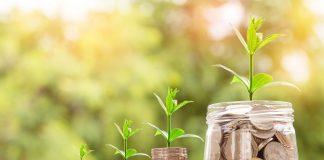 U 2022 Rotsi Usi Diyuchi Programy Derzhpidtrymky Agrosektoru Budut Prodovzheni