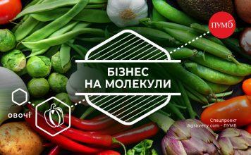 Svizhi Chy Konservovani Vektor Rozvytku Ovochevogo Rynku