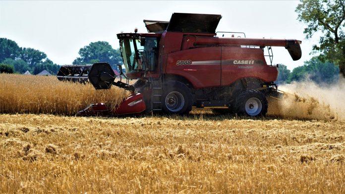 U 2021 Rotsi V Ukrayini Prognozuyut Zbilshennya Vyrobnytstva Agroproduktsiyi Na 44