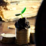 Na Pidtrymku Agrosektoru U 2021 Rotsi Planuyut Vydilyty 84 Mlrd Grn
