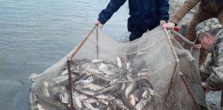 Na Donechchyni Brakonyer Nezakonno Vylovyv Rybu Na 27 Mln Gryven