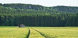 Tsogo Roku V Ukrayini Mozhe Buty Uhvalenyj Zakon Pro Strahuvannya Agroproduktsiyi