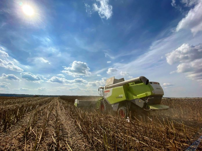 U Kontinental Farmerz Grup Suttyevo Spovilnyvsya Zbir Vrozhayu Cherez Pogodni Umovy