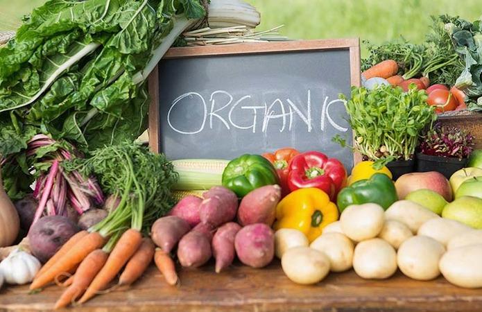 Programy Z Pidtrymky Organichnogo Vyrobnytstva Diyut V 15 Ty Oblastyah