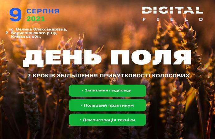 Digital Field 7 Krokiv Dlya Zbilshennya Prybutkovosti Kolosovyh