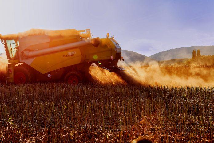 Ukrayinski Agrariyi Zibraly 609 Mln Tonn Zerna